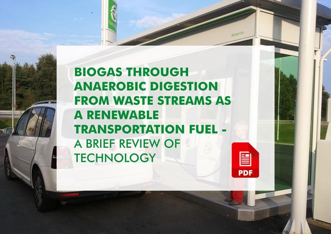 ETIP_Bioenergy_Biogas_publications_review