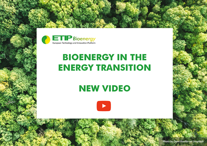 SLIDE_bioenergy_in_the_energy_transition_video