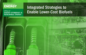 Integrated Strategies to Enable Low-Cost Biofuels