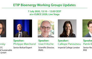 Workshop - ETIP Bioenergy Working Groups Updates: Presentations and Recording Available